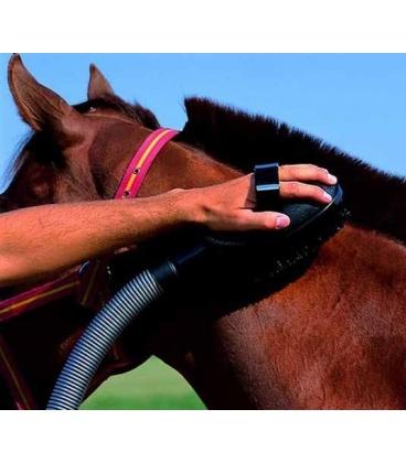 Brosse aspirateur sur un cheval